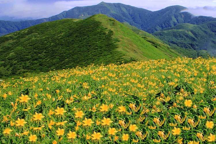 北東北山岳ガイド協会 和賀岳 ガイドプラン